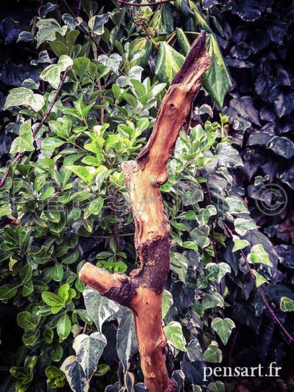 Mobilier- Tabouret avec branche en bois