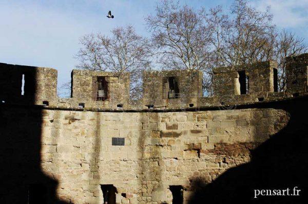 photographies-château-Carcassonne